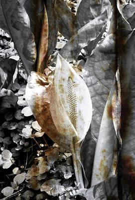 Rusting Nature Art Print by Roberto Alamino