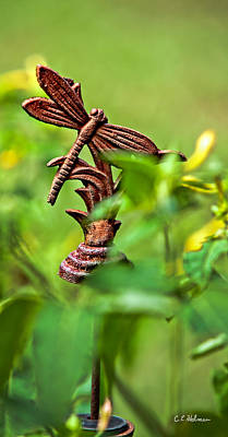 Dragonfly Ornament Photograph - Rusty Dragonfly by Christopher Holmes