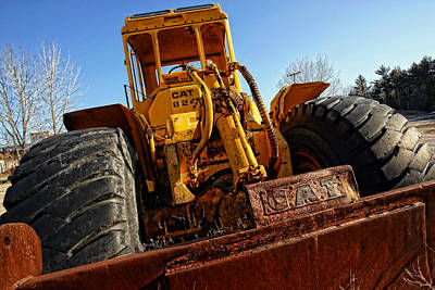 Rusty Gold Cat 824 Original by Gordon Dean II