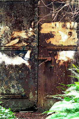 Photograph - Rusty Iron Door by Marie Jamieson