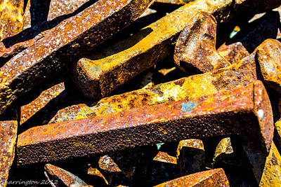 Photograph - Rusty Nails by Shannon Harrington