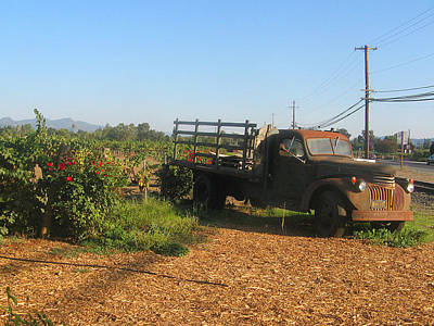 Photograph - Rusty Truck In Napa Valley by Leontine Vandermeer