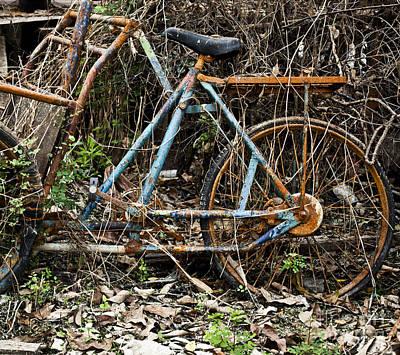 Rusty Wheel Of Bicycle Art Print by Chavalit Kamolthamanon