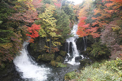 Photograph - Ryuzu Fall Nikko Japan by Masami Iida