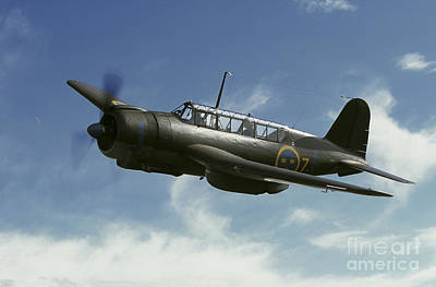 Photograph - Saab B 17 Dive Bomber Warbird by Daniel Karlsson