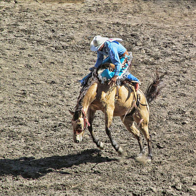 Photograph - Saddle Back Bronc Riding by Ron Roberts