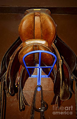 Stables Photograph - Saddles by Elena Elisseeva