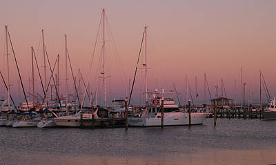 Art Print featuring the photograph Safe Harbor by Brian Wright