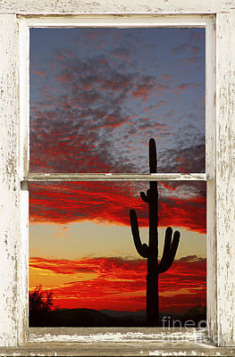 Photograph - Saguaro Sunset Picture Window View by James BO Insogna