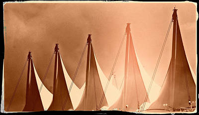 Photograph - Sail by Lauren Williamson
