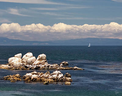 Photograph - Sailboat In Monterey Bay by Endre Balogh
