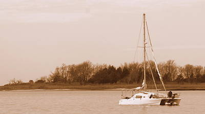 Sailboat On Chesapeake Art Print