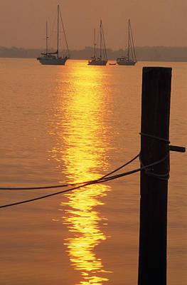 Truck Art - Sailboats At Sunset by Natural Selection Tony Sweet