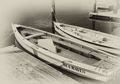 Photograph - Sailboats At The Dock by Wilma  Birdwell