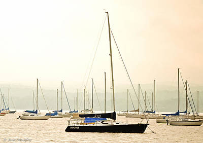 Photograph - Sailboats Moored On The Hudson River by Ann Murphy