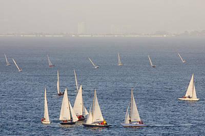 Sailboats Racing Cluster Art Print by Skip Brown