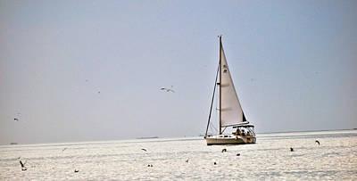 Sailing Print by Anusha Hewage
