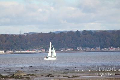 Photograph - Sailing by David Grant