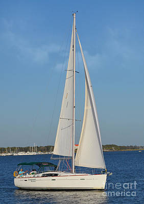 Photograph - Sailing In Charleston Bay by Kathy Baccari