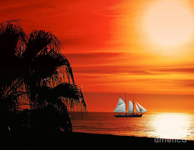 Sailing In Mexico Art Print