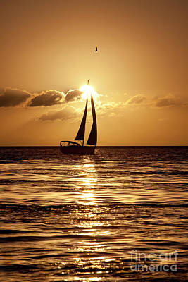 Sailing In The Sun Art Print by Keith Kapple
