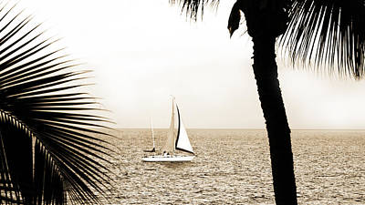 Photograph - Sailing The Pacific by Marilyn Hunt
