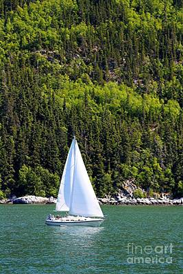 Art Print featuring the photograph Sailing The Wilderness by Laurinda Bowling