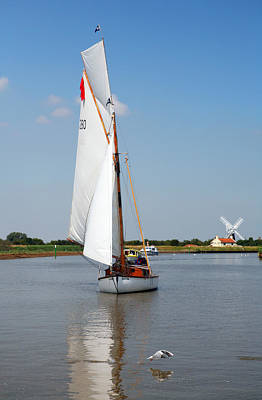 Photograph - Sailing The Yare by Paul Cowan