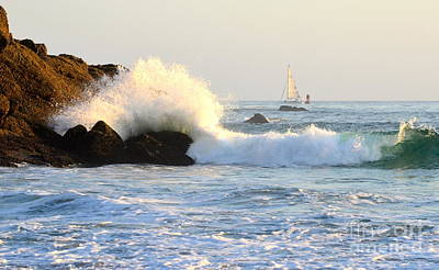 Photograph - Sailing Through by Johanne Peale