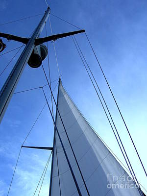 Photograph - Sailing01 by Leela Arnet