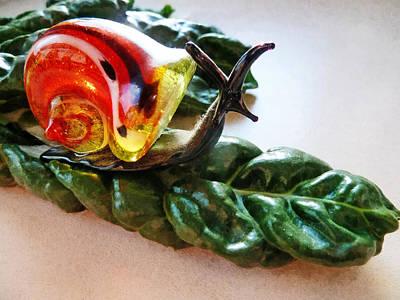 Vinaigrette Photograph - Salad Dressing by Steve Taylor