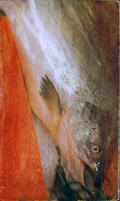 Painting - Salmon Delight by Nop Briex