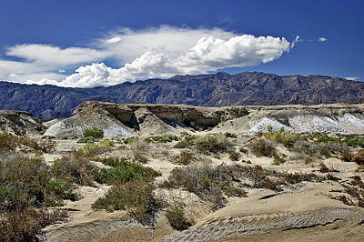 Photograph - Salt Creek In Death Valley by Endre Balogh