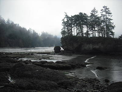 Photograph - Salt Creek Near Port Angeles by Kelly Manning