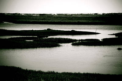 Salt Marsh Art Print by Jez C Self