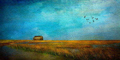 Salt Marsh Art Print