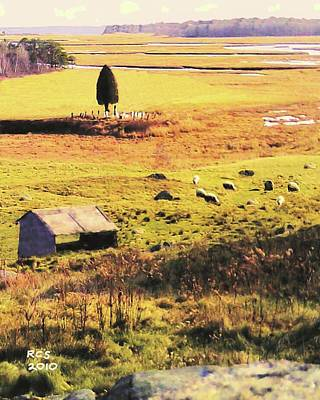 Digital Art - Salt Marsh Pasture by Richard Stevens