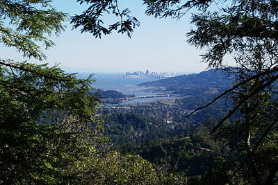 Photograph - San Francisco As Seen Through The Redwoods On Mt Tamalpais by Ben Upham III