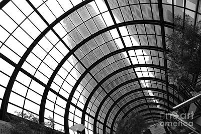 San Francisco Crocker Galleria - 5d17869 - Black And White Art Print by Wingsdomain Art and Photography