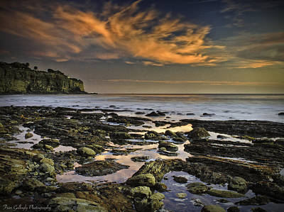 Photograph - San Pedro Twilight by Fran Gallogly