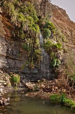 Photograph - San Pedro Waterfall by Matt MacMillan