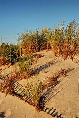 Photograph - Sand Dune II - Jersey Shore by Angie Tirado
