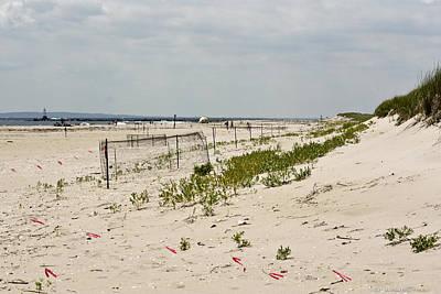 Photograph - Sand Dunes by Ann Murphy