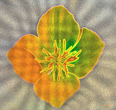 Sand Flower Art Print by Mitch Shindelbower