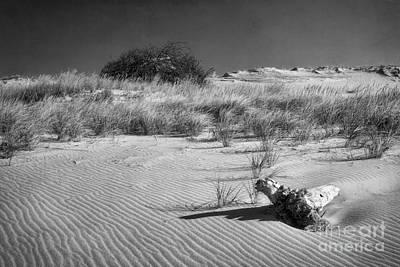 Sand Hill Monochrome Art Print