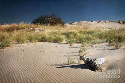 Sand Hill Art Print