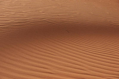 Africa Photograph - Sand by Ivan Slosar