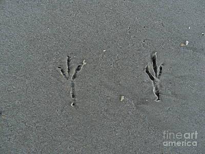 Sand Prints Art Print by Jennifer Kelly
