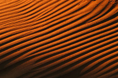 Photograph - Sand Ripple by Alistair Lyne