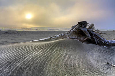 Driftwood Beach Fog Wall Art - Photograph - Sand Wrinkles by Debra and Dave Vanderlaan